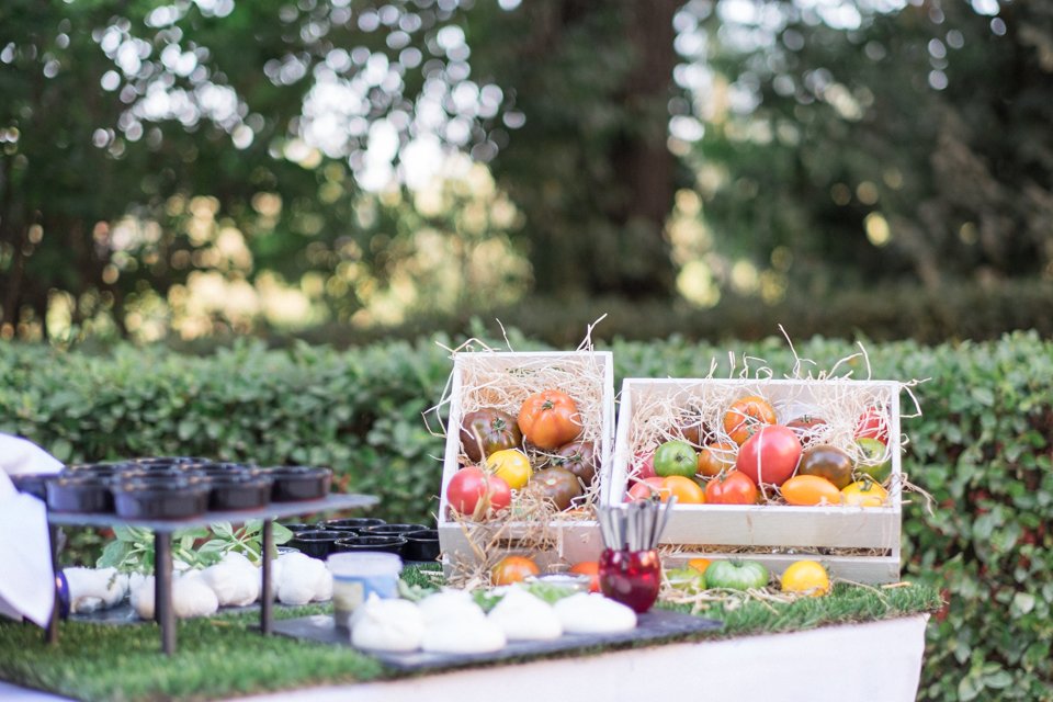 mariage-champetre-provence-var-hyeres-1295
