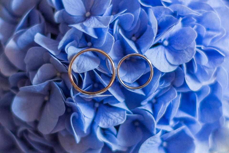 photographe-mariage-lyon-chateau-de-la-bourdeliere-hortensias-61