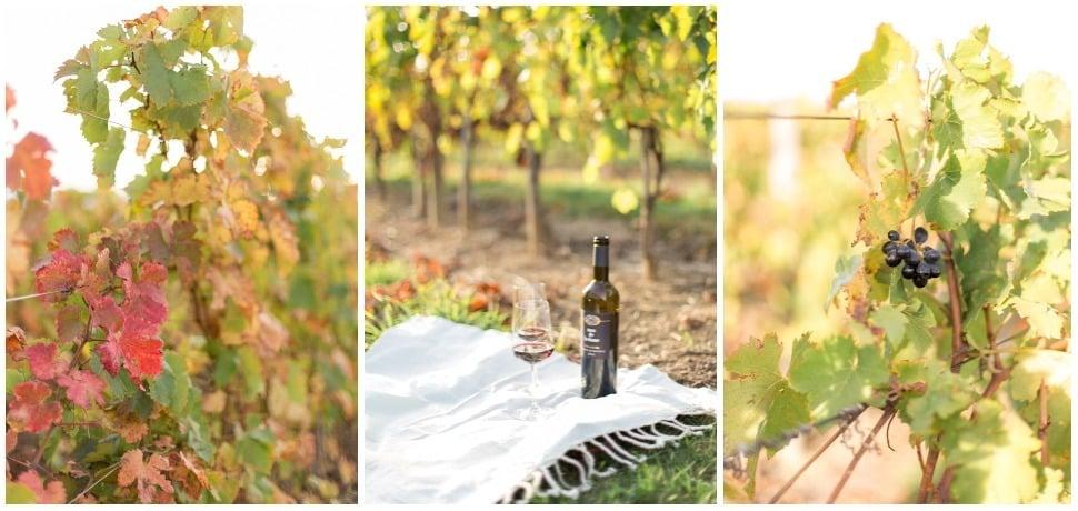 séance engagement à lyon dans les vignes