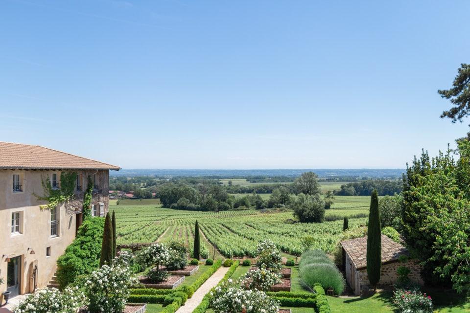 la vue sur les vignes du domaine de la javerniere